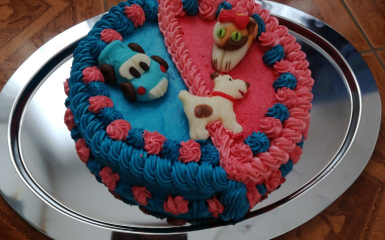 Hotový dvoubarevný dort