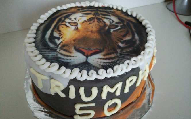 10. Hotový dort s tygrem