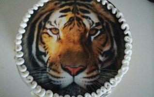 Hotový dort